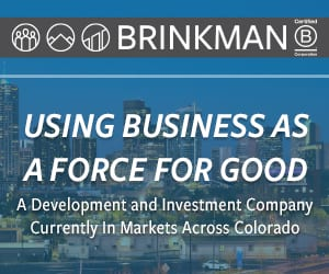 Brinkman 2019 Banner 300 x 250